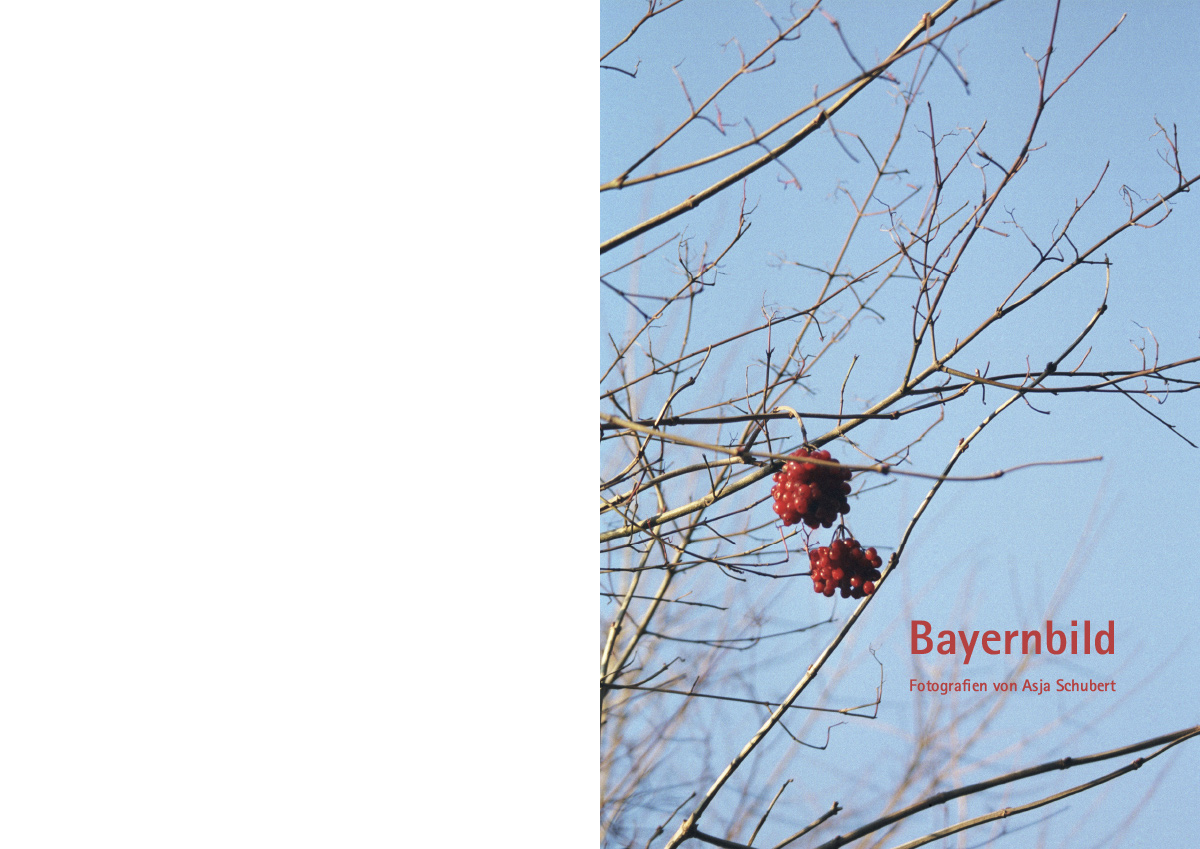 Bayernbild-01
