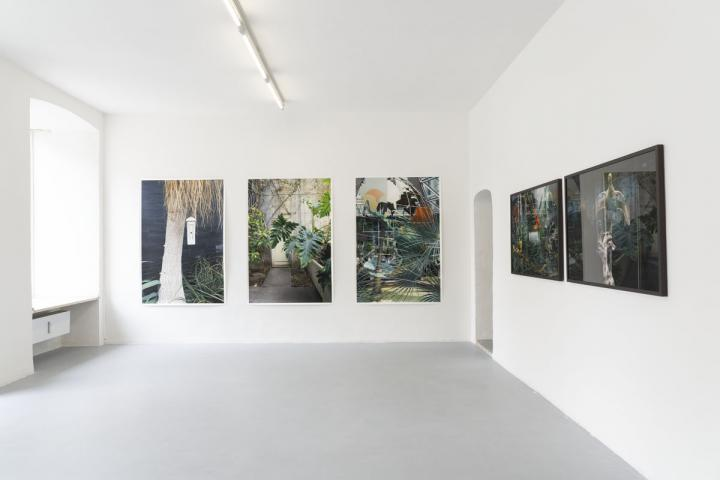 in natura, Neue Galerie im Höhmannhaus, Augsburg